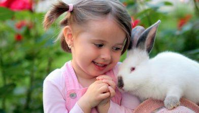 Wie zijn konijn lief is zorgt voor de juiste vaccinatie