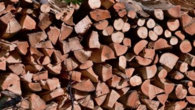 PvdA en D66 willen einde aan verstoken hout in biomassacentrales