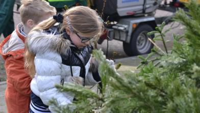 Kerstbomen inleveren voor geld en zwemkaartje
