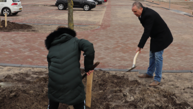 Wethouder William Dogger steekt de handen uit de mouwen bij het planten van een boom