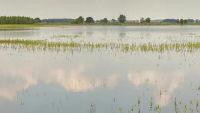 Hoog water in de IJssel komt in de zomer niet vaak voor