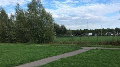 De betreffende groenstrook in Ewijk.