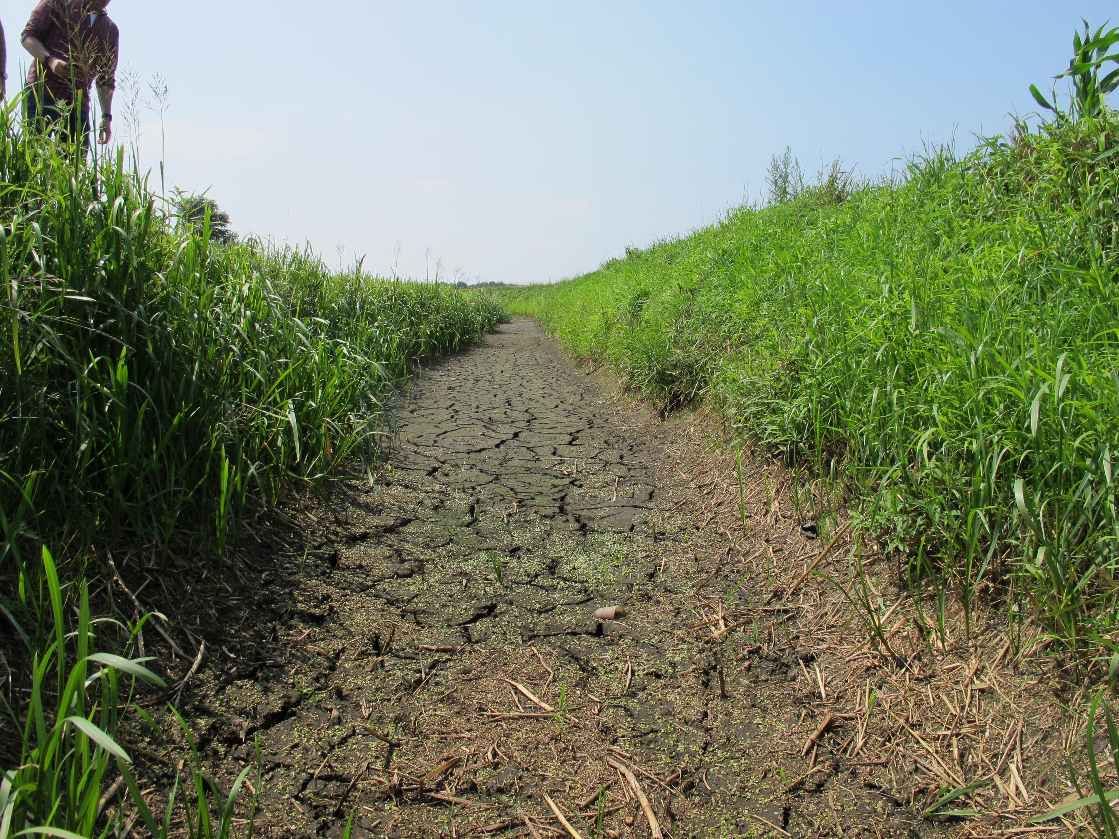 Waterschap aa maas stelt onttrekkingsverbod uit oppervlaktewater