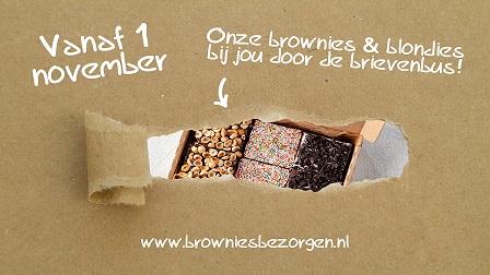 Brownies en Downies 1
