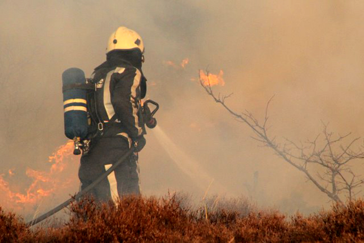 Brandweer in actie in het duingebied van Bergen aan Zee (Foto: Wikipedia)
