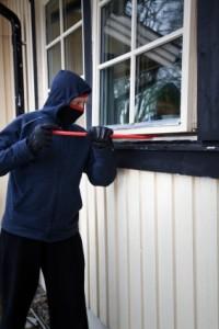 the-burglar