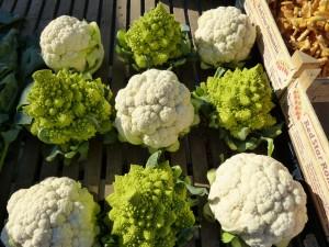 cauliflower-68791_960_720