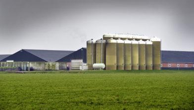 Het mega-varkensbedrijf van Machiel Coppens in Boekel in Noord-Brabant .