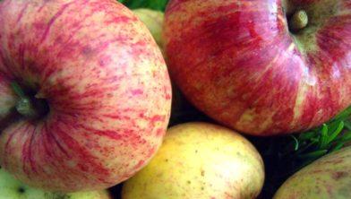 Appels.