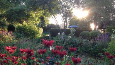 Mooie tuin te bezoeken.