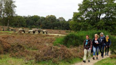De Afrikaloop mocht wél door Westerveld (Havelte).