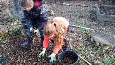 Leerlingen bezig in de tuin.