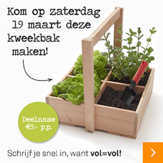 Tuinvoordeeldag Bij Karwei Dongen Kom Een Kweekbak Maken Dongen
