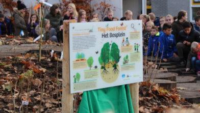 Het Bosplein Tiny Food Forest Ede